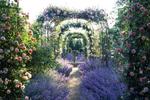 A garden-lover's paradise at Nymans