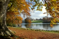 Autumn scene lake