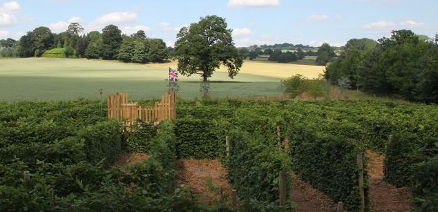 Arley Gardens Maze