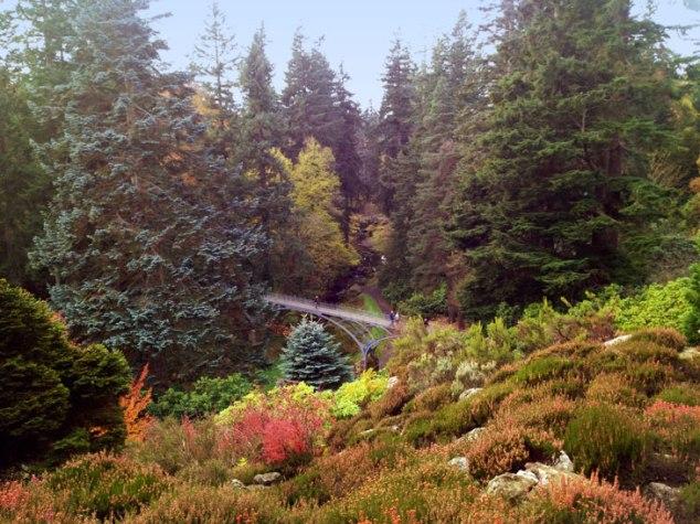 cragsidegarden