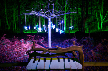 illuminated_forest_adventure_zone_stockeld-park